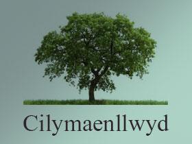 Cilymaenllwyd logo