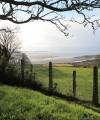 cilymaenllwyd estuary view